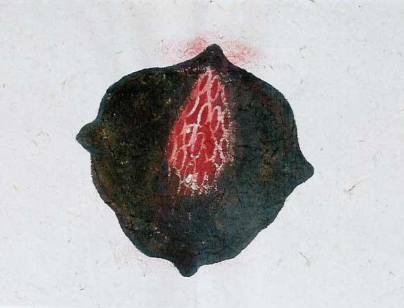 forma-simbólica-4-copy